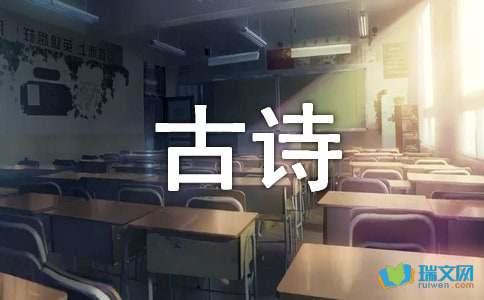 滁州西涧古诗解析